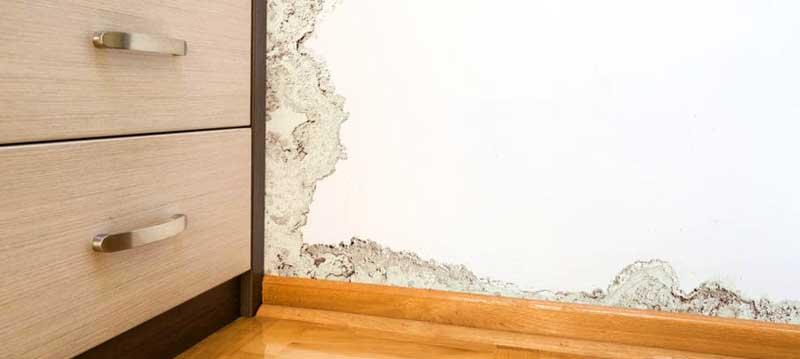 Влагоабсорбиращи материали срещу домашна влага